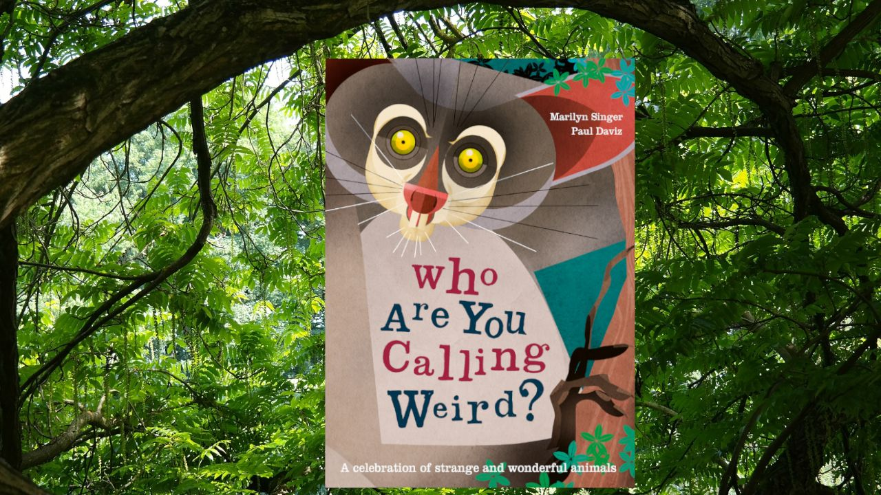 Which Weird and Wonderful Creature is Your Favourite?