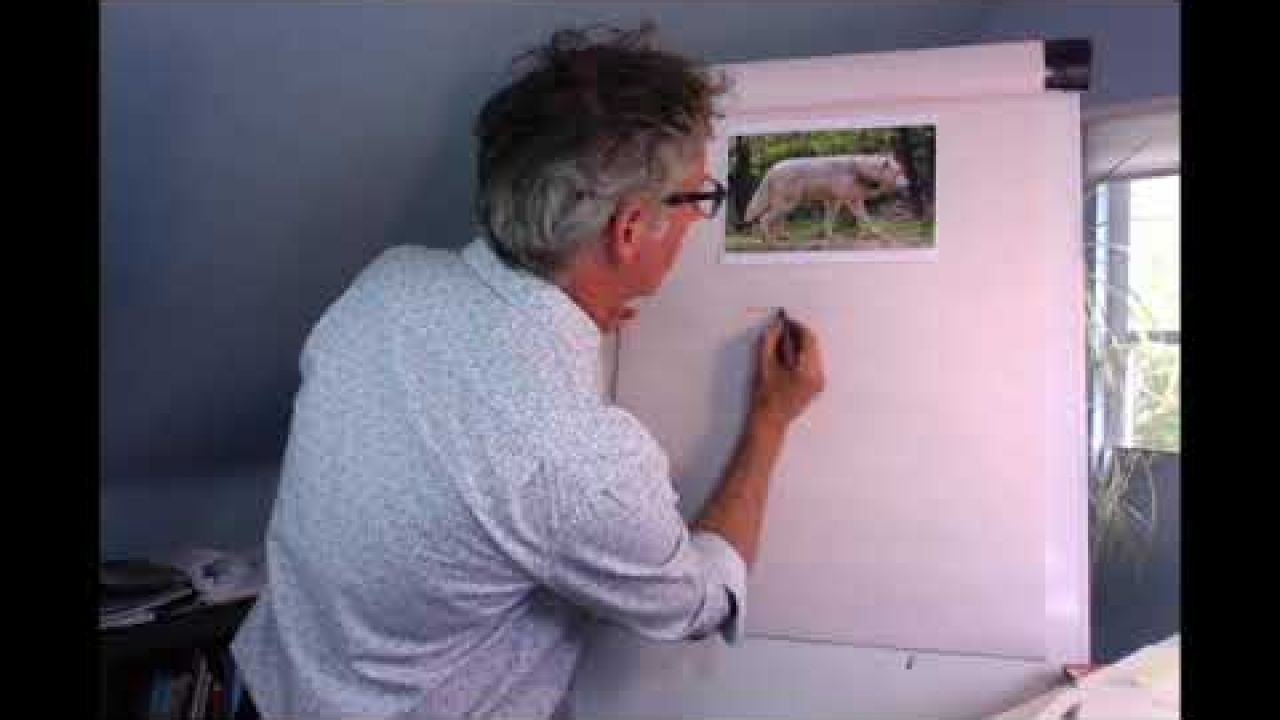 Learn how to draw animals with Martin Brown!
